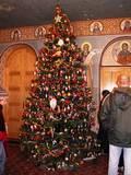סיור מודרך בירושלים - עץ חג המולד (כריסטמס) בכנסייה הרומנית (אורטודוכסים)