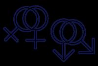 זוגות חד מיניים
