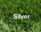 """דשא סינטטי 1 מ""""ר - Silver"""
