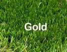 """דשא סינטטי 50 מ""""ר - Gold"""