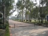 הכניסה ל- Samadhi Areas  שזה גן זכרון גדול למספר מנהיגים הודיים