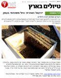 המלצה בYnet תירות על דבורת התבור פורסם ב 15-9-2014