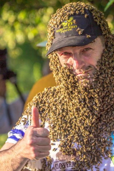 זקן הדבורים