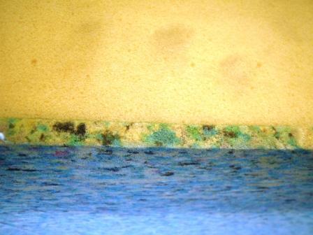 מגניב ביותר ספוגים, גומי אויר, ספוג כחול, ספוג סגול, לטקס QT-22