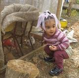Child visiting the rabbit hutch