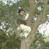 Ahmed climbs a tree