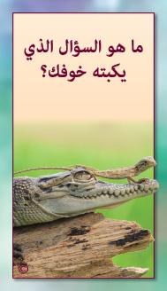 קלפי מנטורי בערבית- ألمستشار الذاتي- ألأسئلة التي تفتح الطريق 18