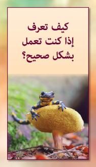 קלפי מנטורי בערבית- ألمستشار الذاتي- ألأسئلة التي تفتح الطريق 19