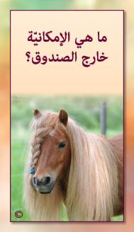 קלפי מנטורי בערבית- ألمستشار الذاتي- ألأسئلة التي تفتح الطريق 25