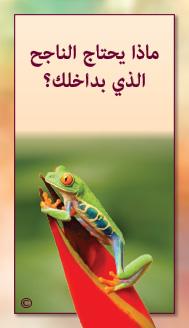 קלפי מנטורי בערבית- ألمستشار الذاتي- ألأسئلة التي تفتح الطريق 26
