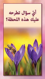 קלפי מנטורי בערבית- ألمستشار الذاتي- ألأسئلة التي تفتح الطريق 4