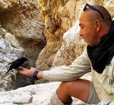 טיולי ג'יפים בים המלח - אלי פרץ המדבר לציפורים