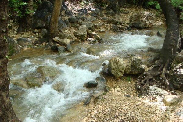 טיולי ג'יפים בגליל המערבי - זרימה בנחל כזיב