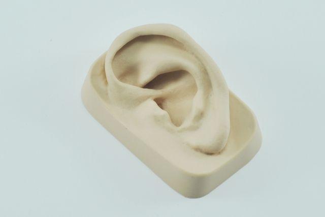 דגם אוזן גומי ימין Sedatelec