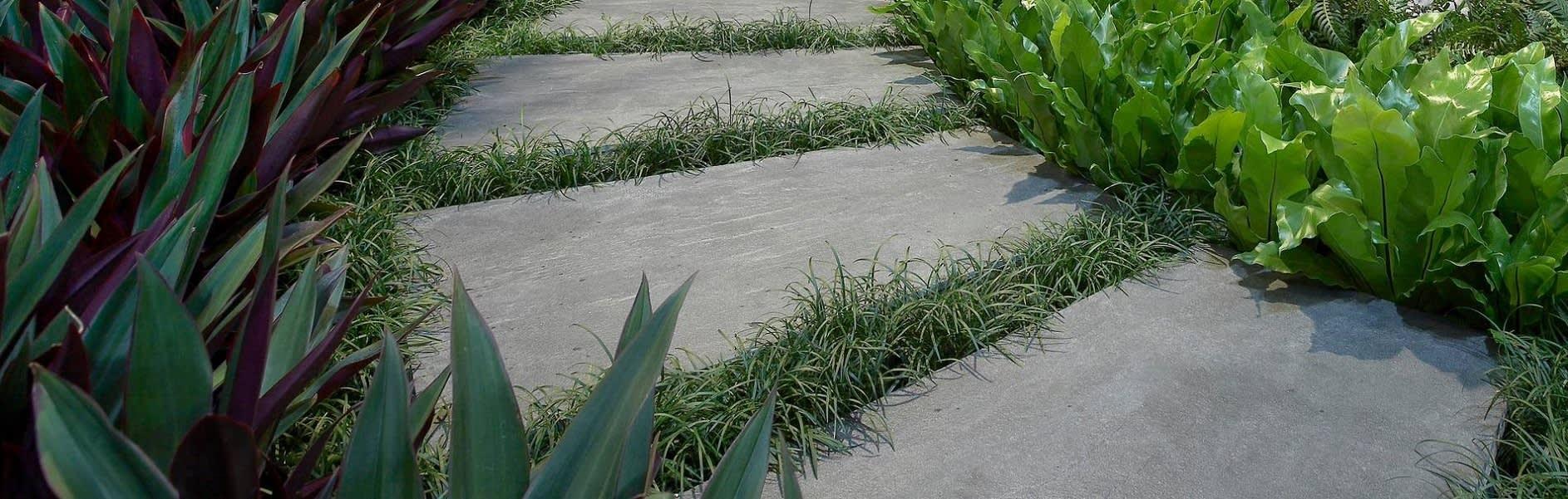 תכנון מערכת השקיה
