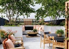 צמחים לגינה במרפסת