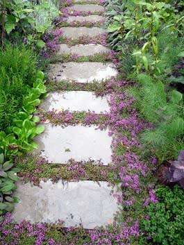 מעבר אבן טבעי משולב בצמחייה משתרעת זוחלת