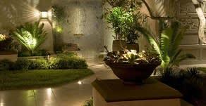 מה ההבדל בין תכנון נוף דומם לצומח ?