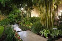 כניסה לגינה במבואה פנימית