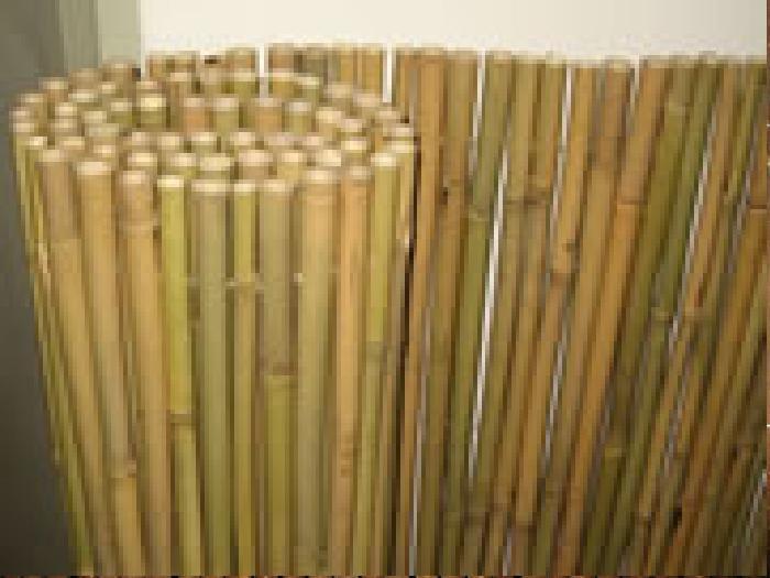 גדר במבוק מושחל, מחצלת במבוק מושחל (14-16) גובה 2 מטר אורך 5 מטר