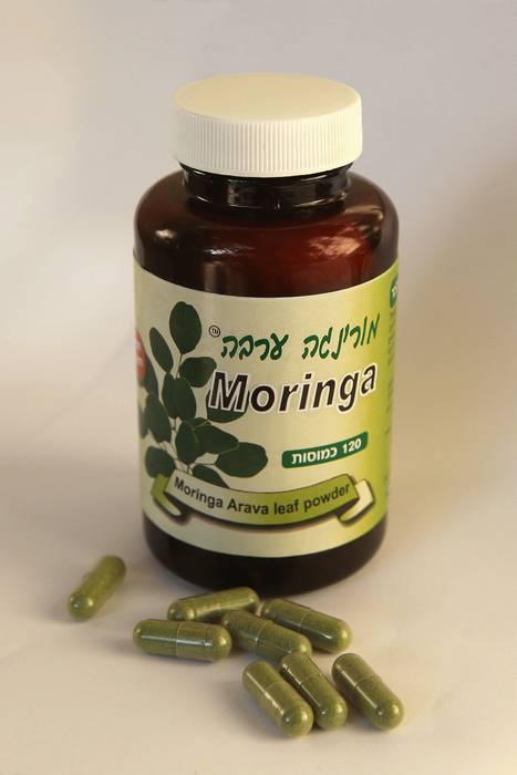 MORINGA צמח הפלאים,הורדת רמת סוכר,מאזן בלוטת התריס,דלקות וכאבי פרקים.