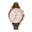 שעון יד פוסיל FOSSIL ES3616