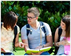 תלמידים מתייעצים על נושא בבגרות