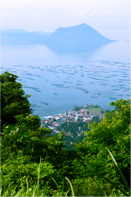 TAAL VOLCANO VIEW