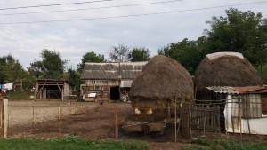 הכפר Bogata