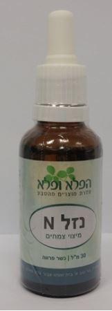 נזלN לנזלת אלרגית שקופה נוזלת, קדחת השחת  - הפלא ופלא
