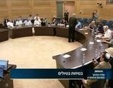 מליאת הוועדה