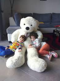 דובי ענק בגובה 1.80