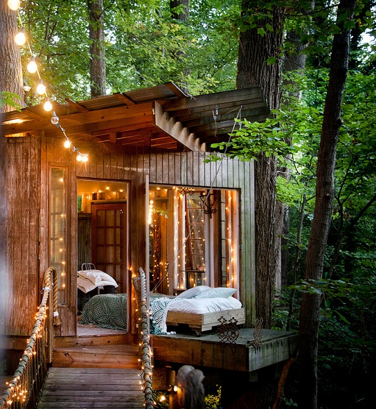 בית על עץ