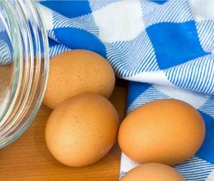 יום הביצה