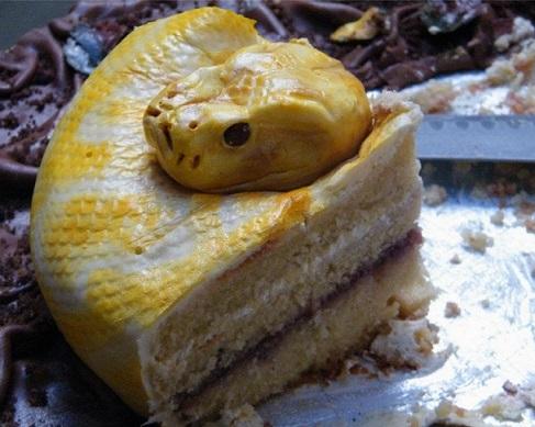 עוגת נחש