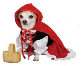 תחפושת לכלב כיפה אדומה