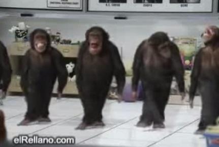 סרטון קופים רוקדים