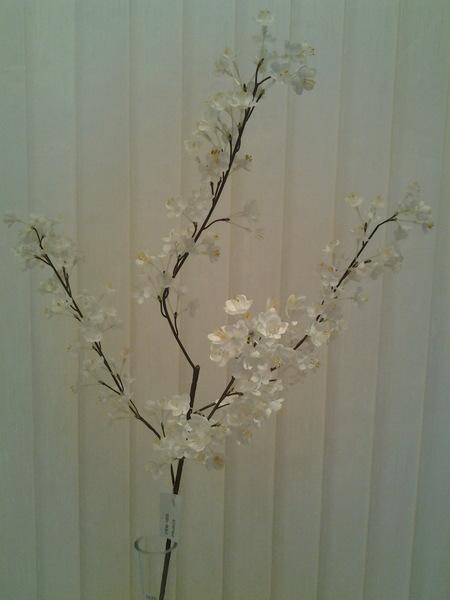 1005-ענף שקדיה מיני