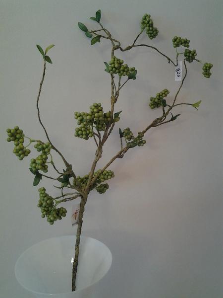 625-ענף כדוריות ברי ירוק