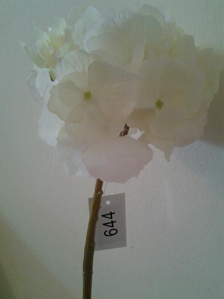 644/2 -אורטנציה  לבן