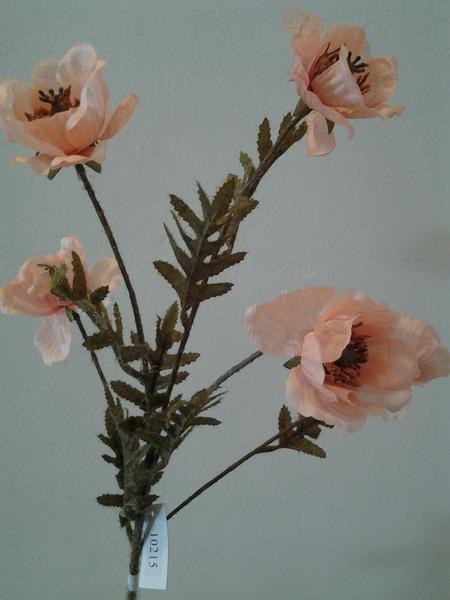 10215/1-כלנית סתוי ורדרד