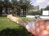 """רשת של 1000 בלונים באירוע של תעשיית """"אלתא"""" באשדוד,את הבלונים משחררים מגובה רב ברגע השיא"""