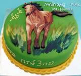 עוגה מצויירת למדריכה ברכיבה טיפולית