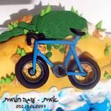 תחרות איש הברזל - האופניים מקרוב