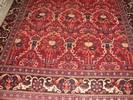 שטיח מישקין ישן 338/238
