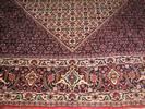 שטיח ביז'אר 308/203