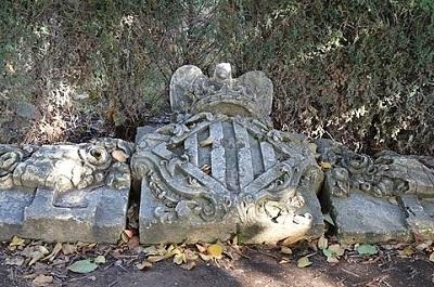 גני רויאל - Royal Nursery Gardens
