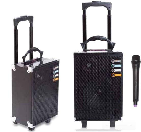 מערכת הגברה וקריוקי ניידת על גלגלים עם רדיו מובנה BM4963