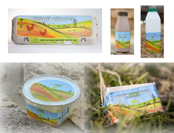 עיצוב אריזות מוצרי חלב