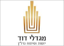 עיצוב לוגו ליזמות ופיתוח נדל-ן - מגדלי דוד